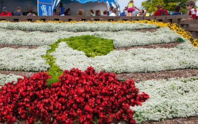 National Cherry Festival 2017 Seniors' Events