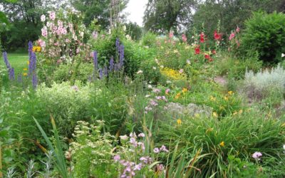 Interlochen Center for the Arts to Offer Free Public Gardening and Ecology Workshops