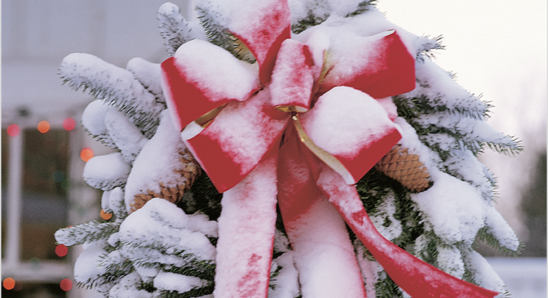 Shop Local! Elk Rapids Holiday Shopping Gift Guide