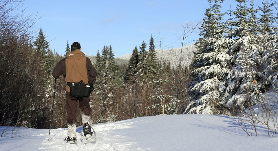snowshoe in cadillac