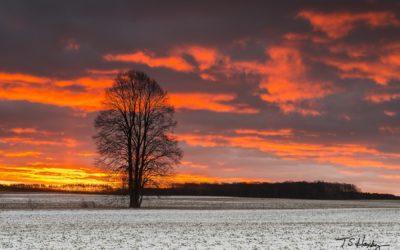A Snowy Sunrise in Kingsley
