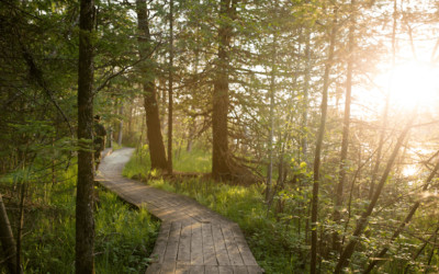 5 Beautiful Hikes in Northern Michigan (And a Granola Snack Recipe!)
