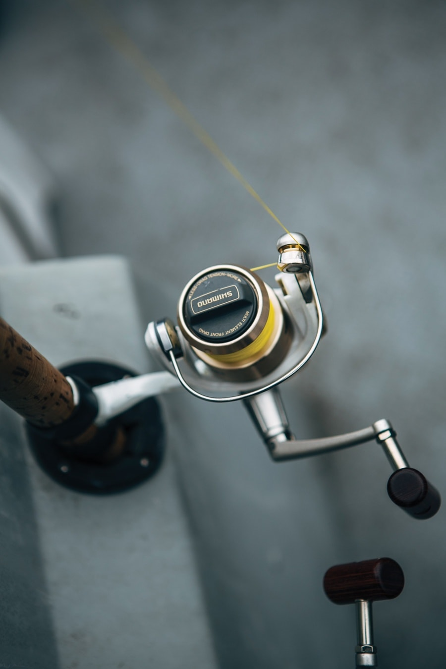 Winter Steelhead Fishing Tips in Northern Michigan – MyNorth com