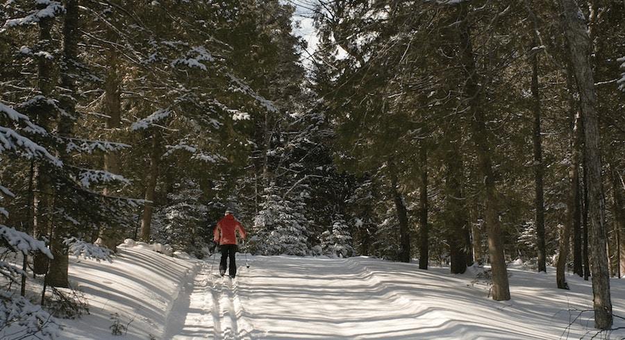 Sleeping Bear Dunes Cross-Country Ski Trails