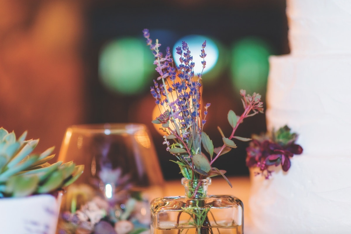casual summer wedding at the homestead com kallie s parents own warsaw cut glass in warsaw na and so happily provided terrariums vases and candleholders for decorations