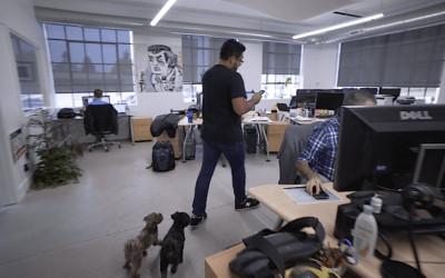 Economic Opportunity: Fernando Meza and Traverse City's Growing Tech Scene