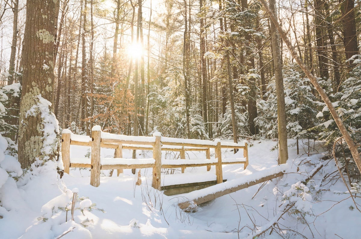 michigan winter travel ideas