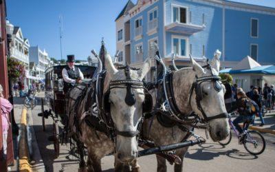 History of the Horses on Mackinac Island