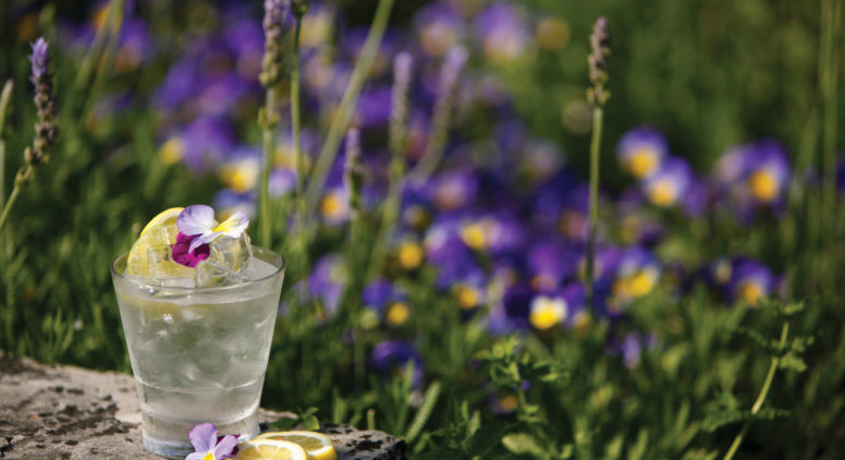 Garden Mixology: Mission Point Resort Infuses Flowers and Herbs Into Fresh Craft Cocktails