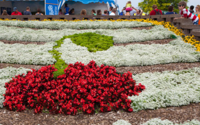 National Cherry Festival Hotel Options Outside of Downtown Traverse City