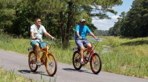 pedego electric bikes petoskey