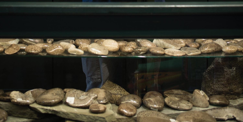 Petoskey stone souvenir