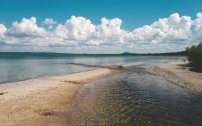 Places That Inspired Northern Michigan's Greatest Authors: Hemingway, Harrison + Voelker