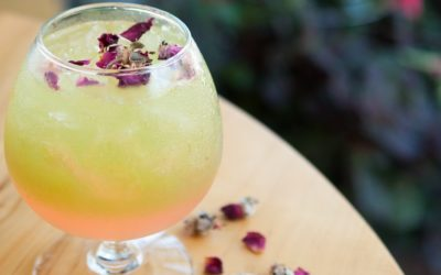 Northern Michigan Gin Roundup + 4 Classic Cocktail Recipes to Try at Home