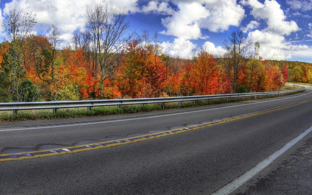 ludington fall color