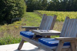 waterfire vineyard