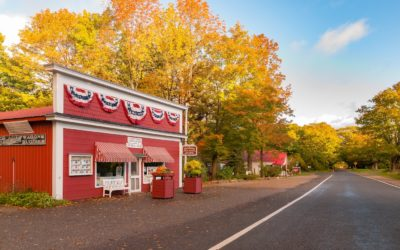 M119 Color Tour: Drive The Tunnel of Trees This Fall