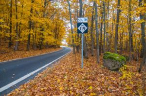 m119 color tour drive the tunnel of trees this fall mynorth com