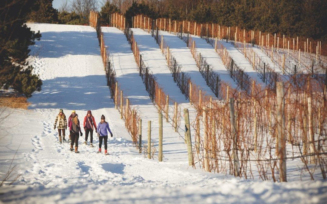 winter wine tours