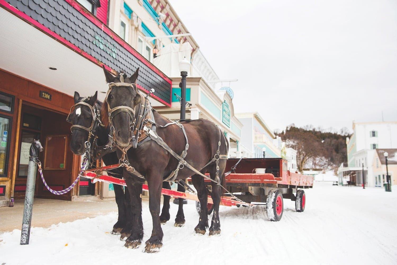 Mackinac Island winter