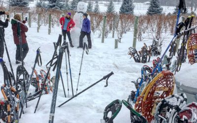 Old Mission Peninsula Snowshoe Wine and Brew Outings Every Sunday