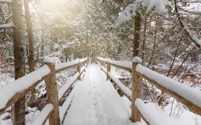 10 Winter Hikes You'll Love at Northern Michigan Nature Preserves