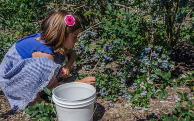 How to Start a Garden for Kids this Spring