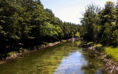 Celebrate and Design New Platte River Park