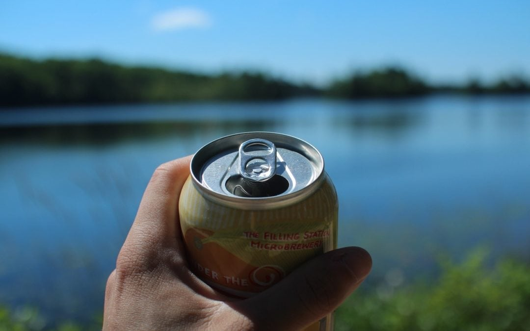 best canned beers michigan
