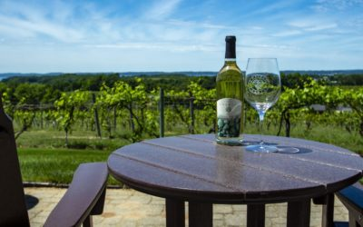 9 Winery Patios in Northern Michigan with Gorgeous Views