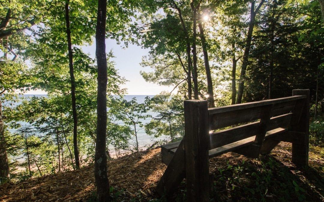 Thorne Swift Nature Preserve