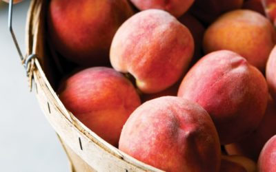 It's the Best Time to Visit Farmers Markets in Northern Michigan