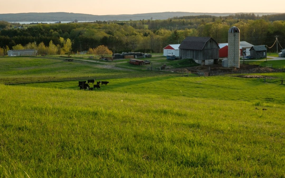 crothers farm