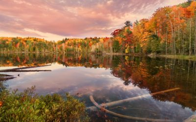 10 Best Michigan Color Tour Views to Take Your Breath Away