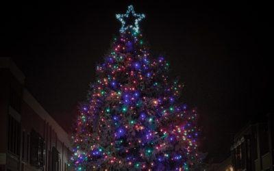 Downtown Traverse City Christmas Tree 2018