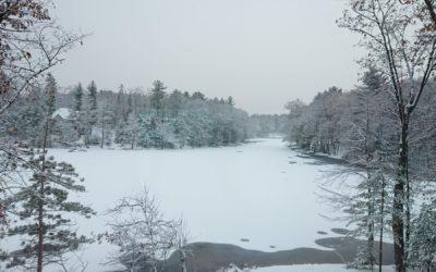 November Snow on Spider Lake