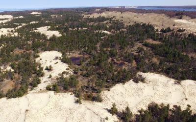 Pristine Sand Dunes Part of 100-Acre Addition to Ludington State Park