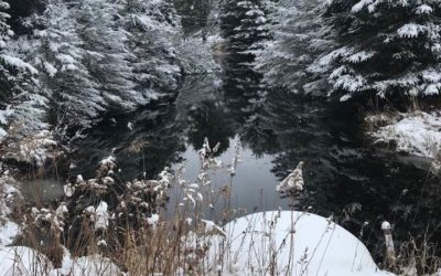 Winter Wonderland, Oscoda