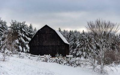 Winter Barn in Benzie