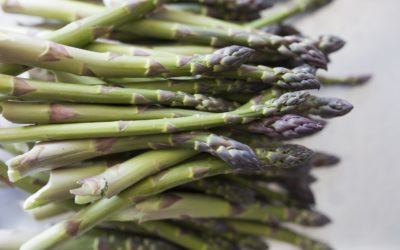 Reasons to Love Norconk Farms Asparagus + Healthy Recipes