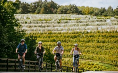 Pedal Your Way to Leelanau Wineries with Grand Traverse Bike Tours