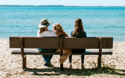 Northern Michigan's Best Dog-Friendly Campgrounds