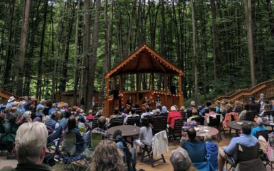 16 Northern Michigan Music Festivals for Your Summer Vacation