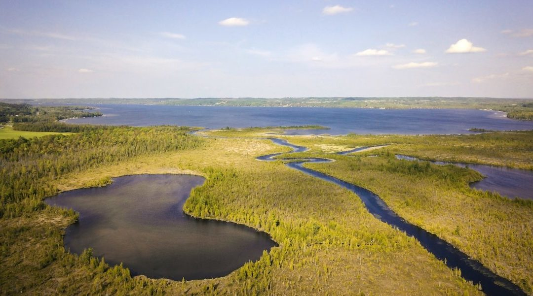 Cedar River Preserve