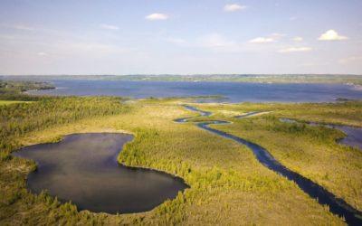 Leelanau Conservancy's Cedar River Preserve Grows to 546 Acres
