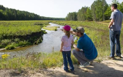 Celebrating 100 years of Pigeon River Country