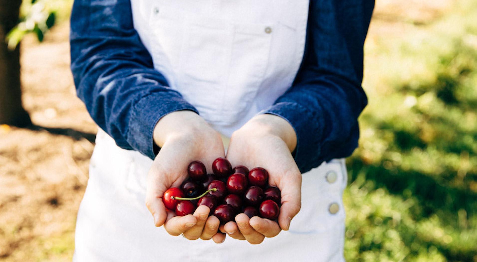 Northern Michigan Cherry Grower