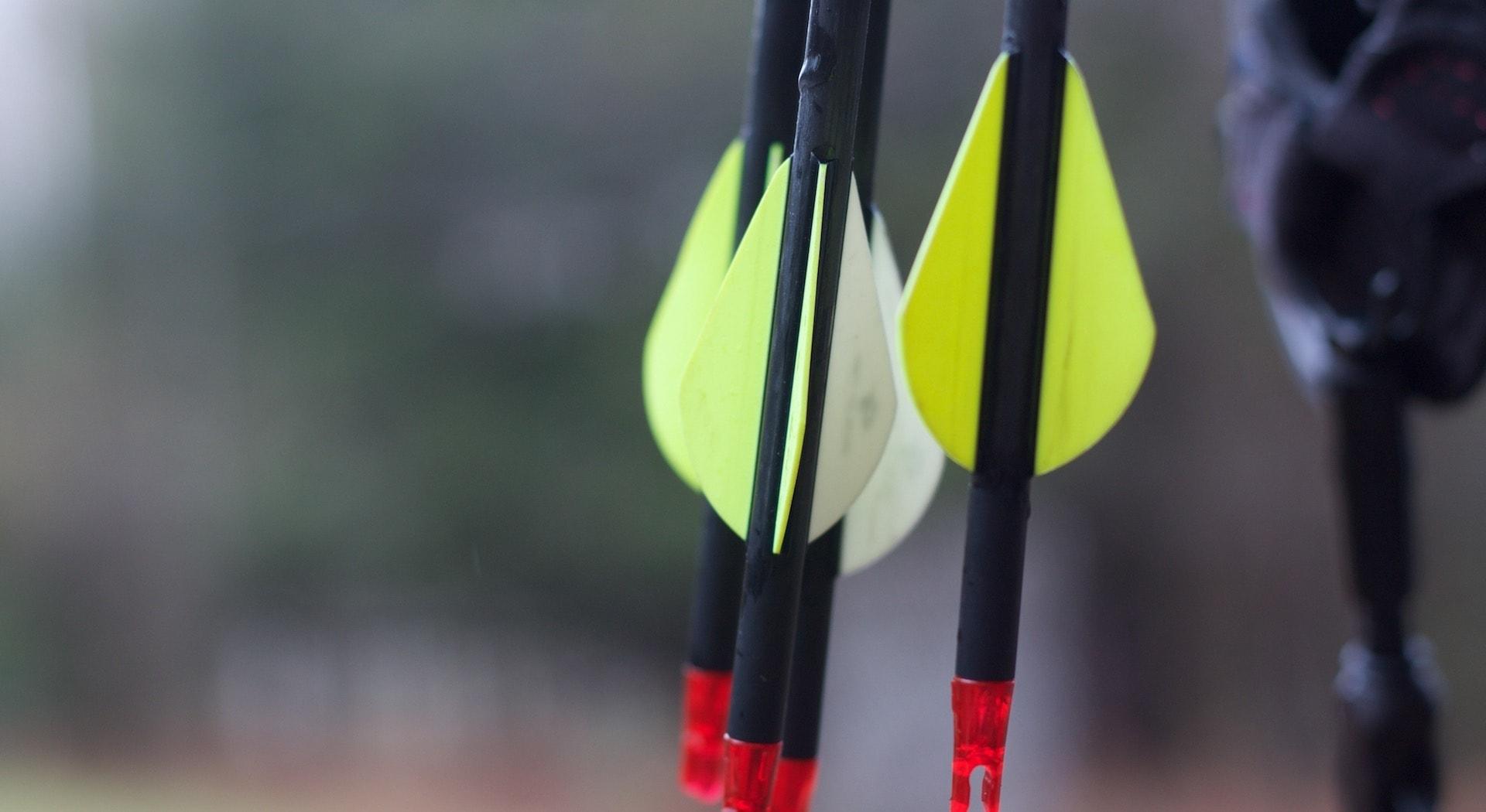 archery season michigan