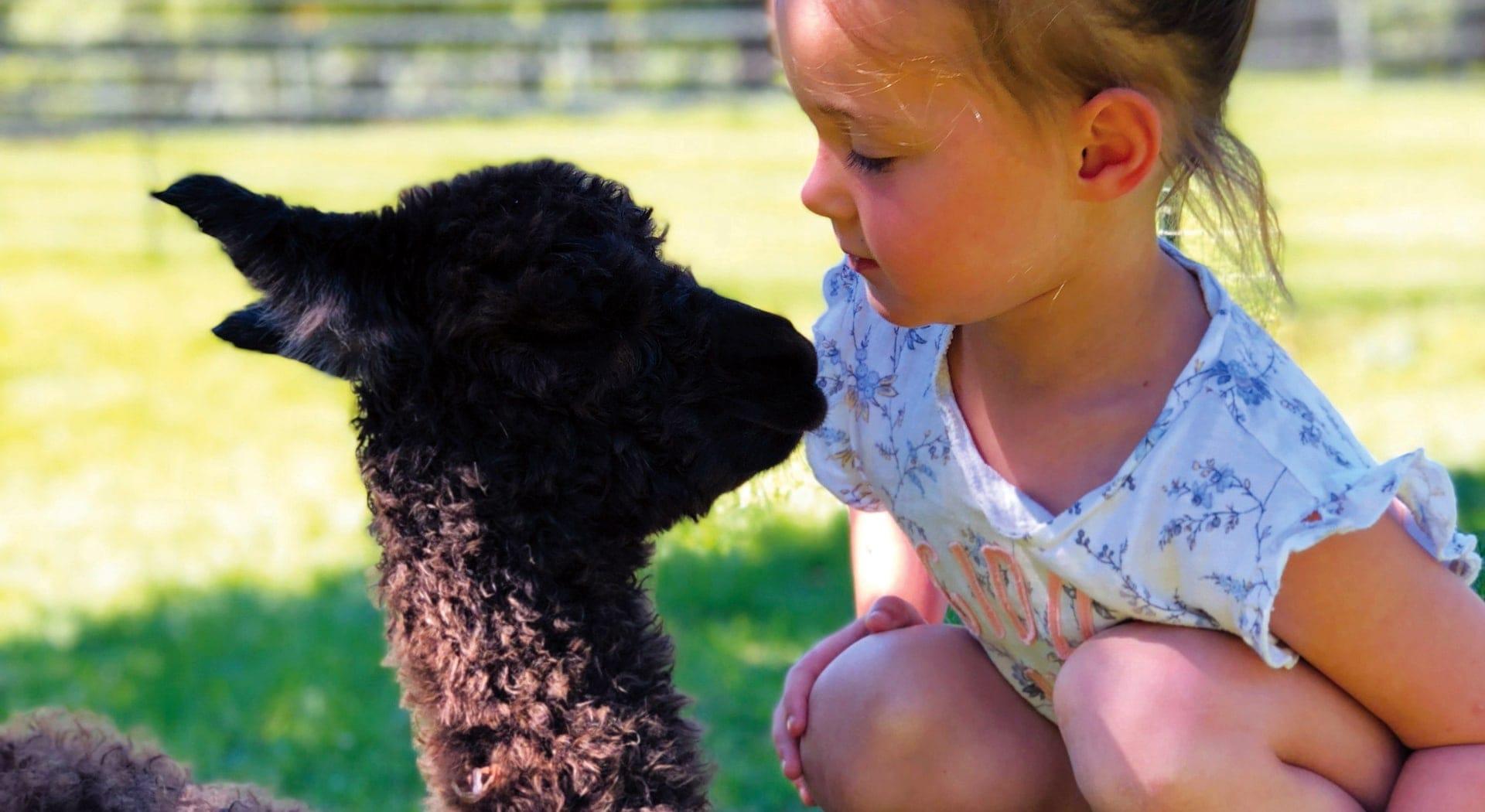 family-friendly farms