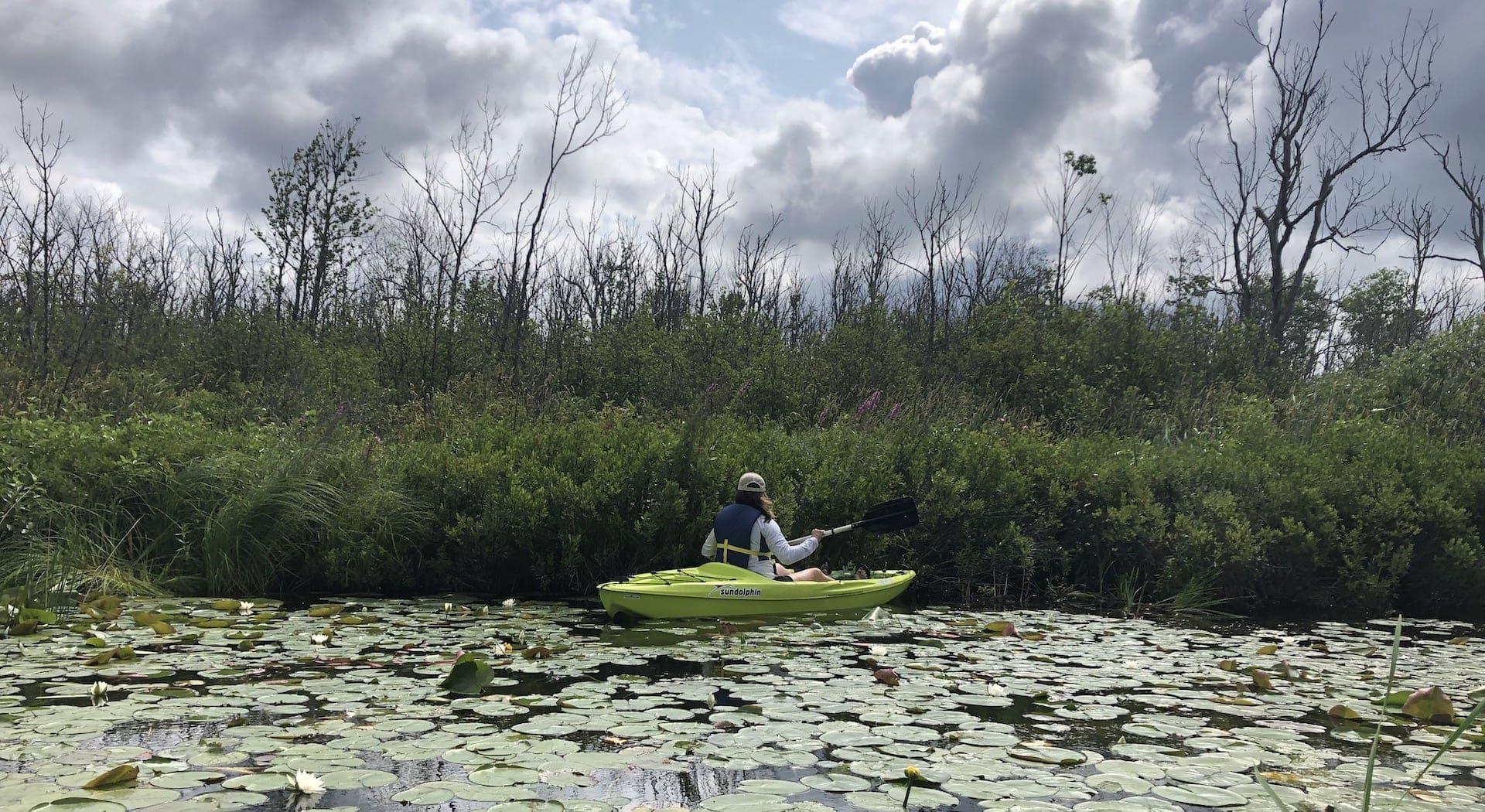 Nathan Beem Memorial Nature Preserve